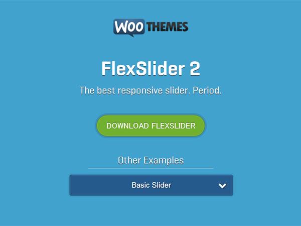 2FlexSlider-2