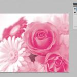 (DTP)2色分解画像のつくりかた